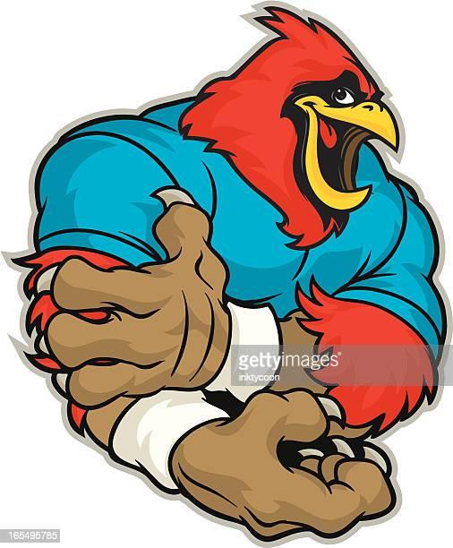 Cardinal Flex