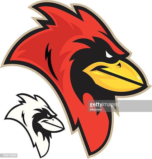 cardinal head - cardinal bird stock illustrations, clip art, cartoons, & icons