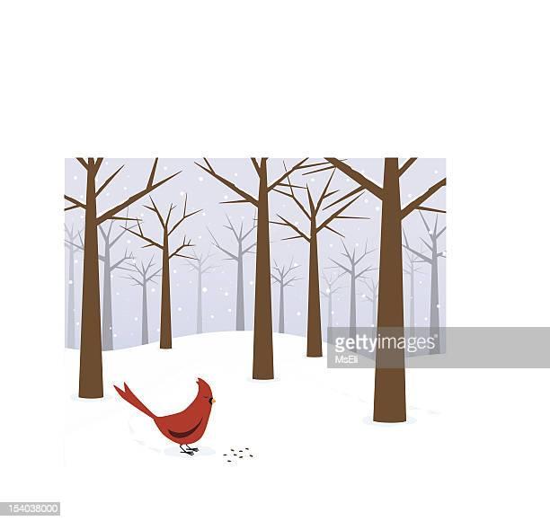 Cardinale in una foresta di inverno