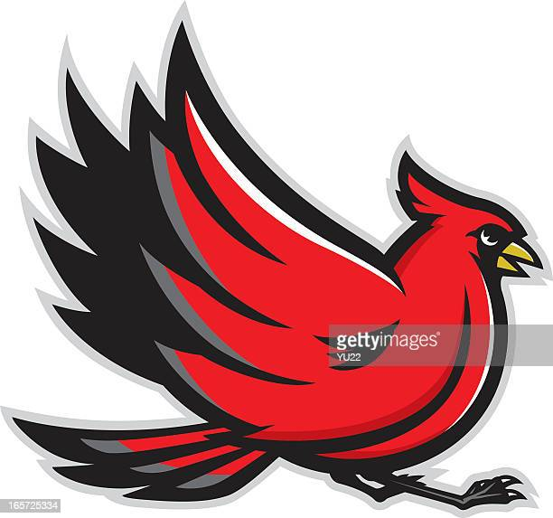 cardinal mascot isolated on a white background - cardinal bird stock illustrations, clip art, cartoons, & icons