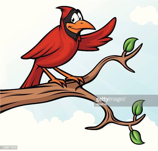 cardinal on branch - cardinal bird stock illustrations, clip art, cartoons, & icons