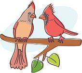 Cardinals couple