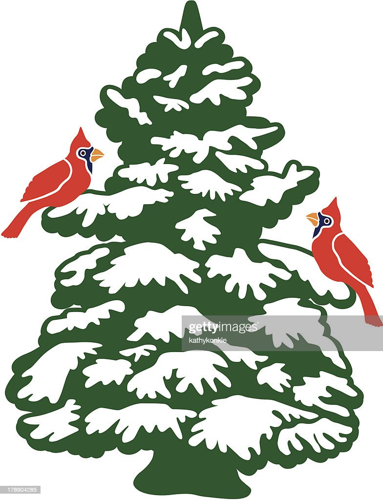 Cardinals in a snow covered pine tree stock illustration - Images of pine trees in snow ...