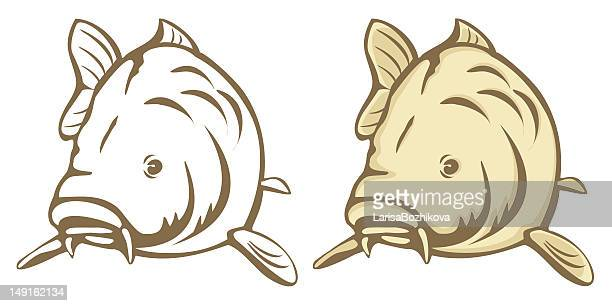 illustrations et dessins anim u00e9s de carpe getty images Yin Yang Dragon Real Yin Yang Koi