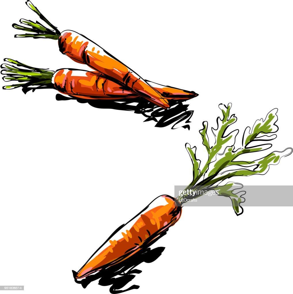 Dibujo De Zanahoria Ilustracion De Stock Getty Images Venta de jugos y licuados 100% naturales. dibujo de zanahoria ilustracion de stock getty images