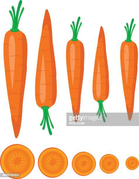 carrot - carrot stock illustrations