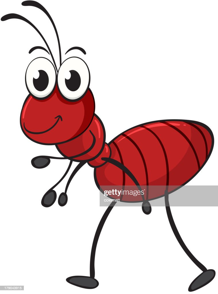 Cartoon ant walking on white background