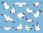 Cartoon atlantic seabird.