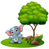 Cartoon baby elephant sitting under a tree on a white background