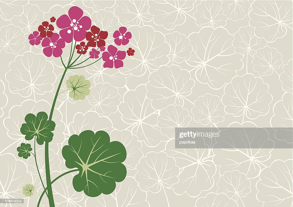 A cartoon background of a geranium with a leafy backdrop