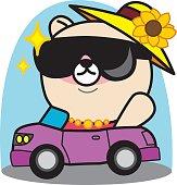 Cartoon bear ride  a car
