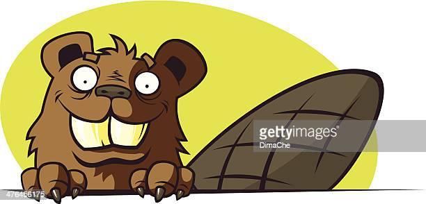 cartoon beaver - funny beaver stock illustrations