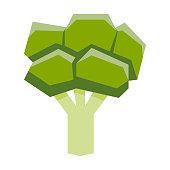 Cartoon Broccoli Isolated On White Background