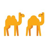 Cartoon camel illustration