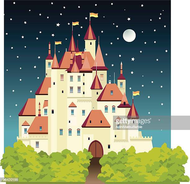 cartoon castle at night with stars and moon - spire stock illustrations, clip art, cartoons, & icons