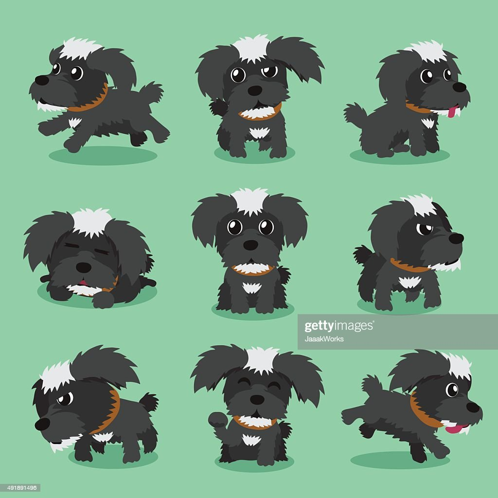 Cartoon character black maltese dog poses