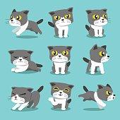Cartoon character cat poses set