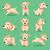 Cartoon character labrador dog poses