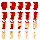 Cartoon Color Stages of Eating Apple Icons Set. Vector