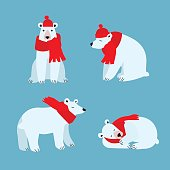 Cartoon Cute Polar Bear Animal. Vector