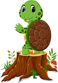 Cartoon cute turtle