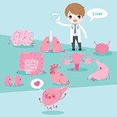 cartoon doctor with organ