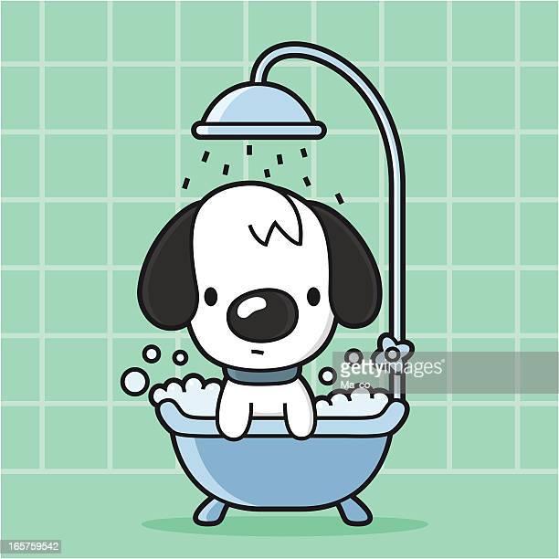 Mulher cão recebe um banho na Banheira/Chuveiro
