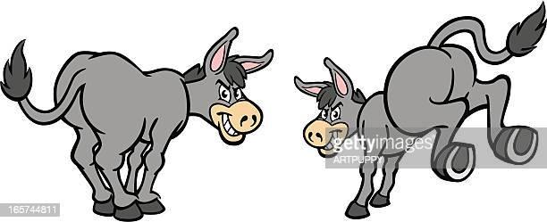 cartoon donkeys - donkey stock illustrations, clip art, cartoons, & icons