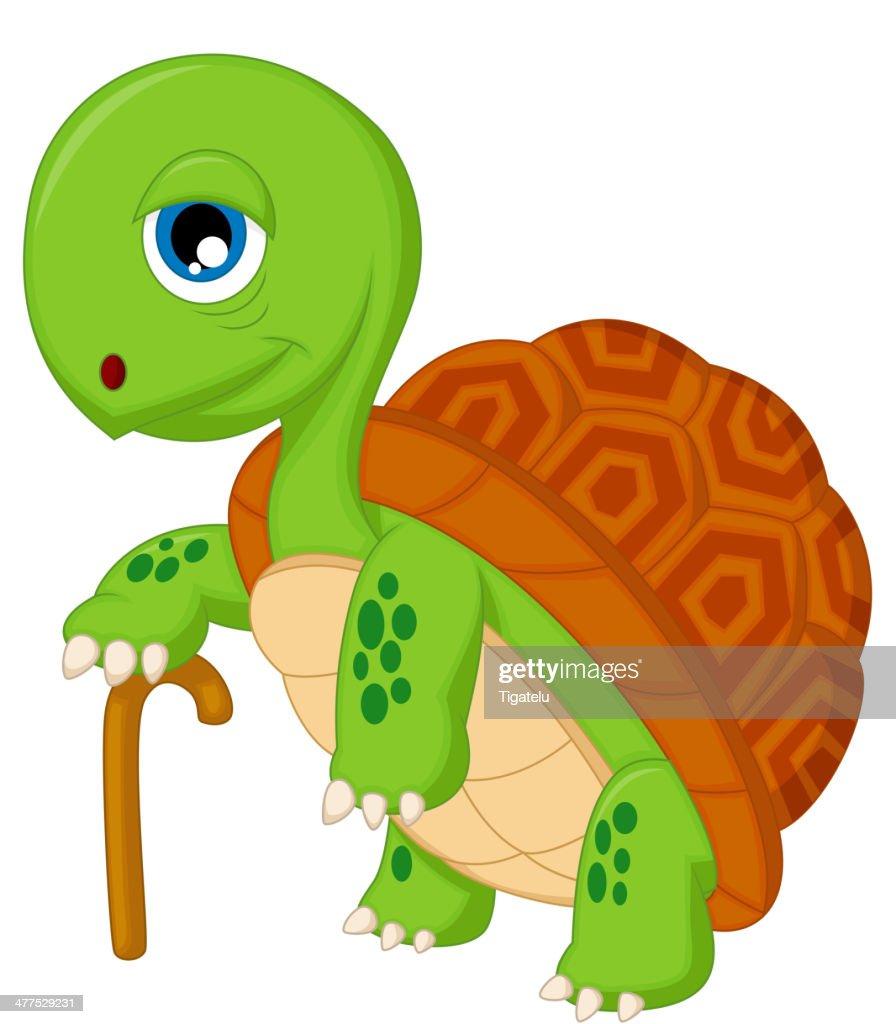 Cartoon elderly tortoise