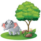 Cartoon elephant under a tree