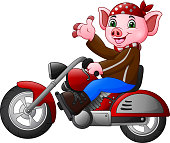 Cartoon funny Pig riding a motorcycle