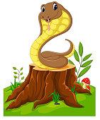 Cartoon funny snake