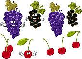 Cartoon grapes, cherries, black currants fruits