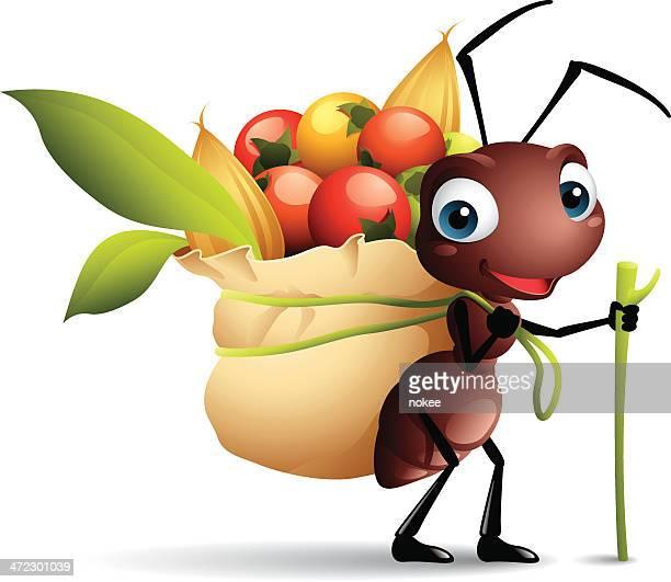 ilustraciones, imágenes clip art, dibujos animados e iconos de stock de dibujos animados de una hormiga gráficos con un saco de cerezas - hormiga