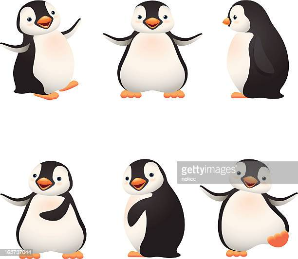 Penguin Stock Illustrations And Cartoons