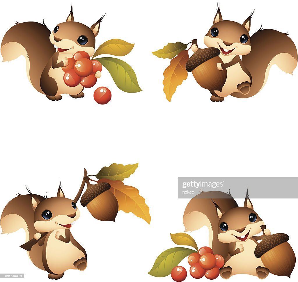 Cartoon graphics of squirrel with acorn or berries