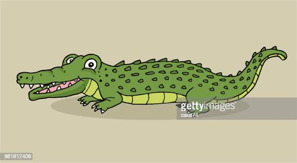 cartoon hand drawn crocodile - alligator stock illustrations, clip art, cartoons, & icons