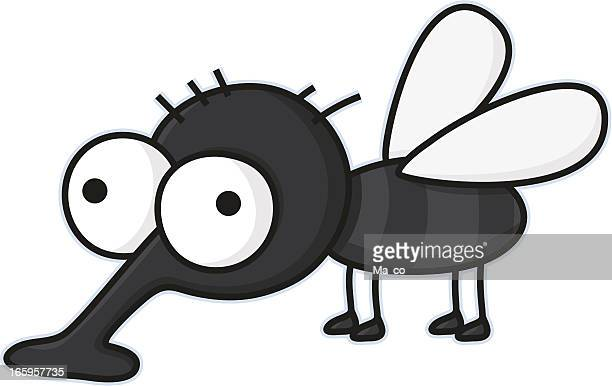 cartoon housefly / vermin - insect