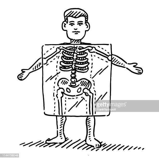 cartoon human figure x-ray skeleton drawing - x ray image stock illustrations