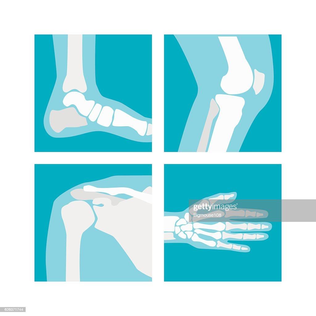 Cartoon Human Joints Set. Vector