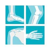 Cartoon Human Joints Set. Vector