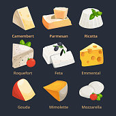 Cartoon illustration of different cheeses. Vector pictures set