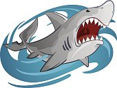 cartoon illustration of white shark