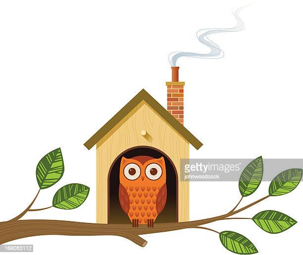 Cartoon image of an owl in a little house on a tree branch