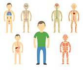 Cartoon man body anatomy.