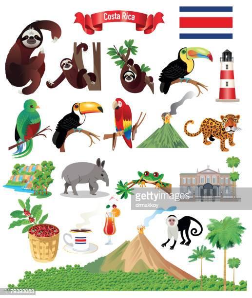 cartoon-karte von costa rica - costa rica stock-grafiken, -clipart, -cartoons und -symbole