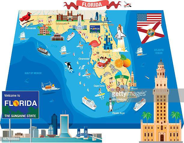 cartoon map of florida - flamingo stock illustrations, clip art, cartoons, & icons