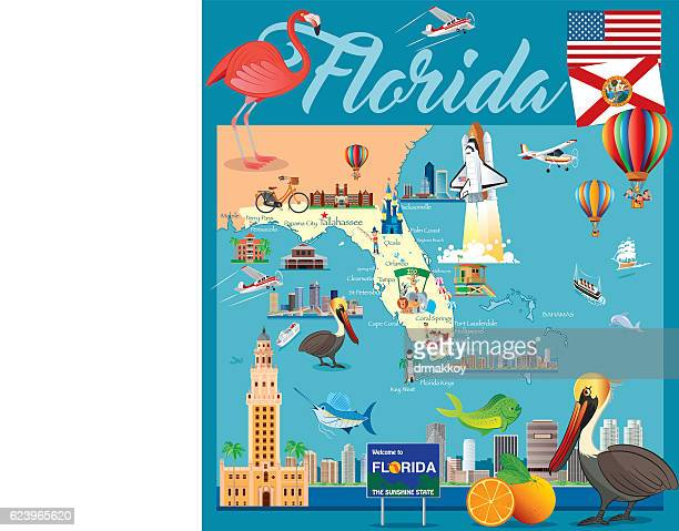 cartoon map of florida - killer whale stock illustrations, clip art, cartoons, & icons