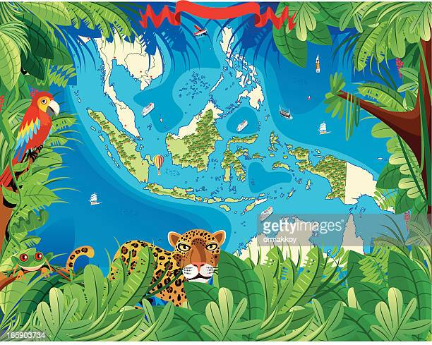 cartoon map of indonesia - bali stock illustrations
