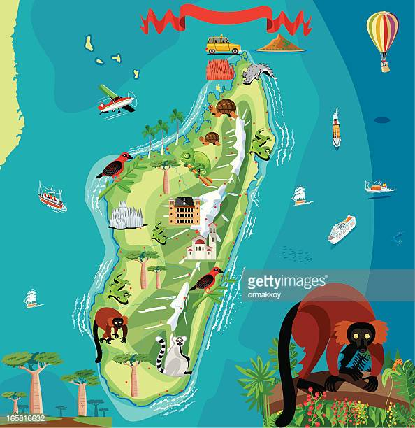 illustrations, cliparts, dessins animés et icônes de carte de dessin animé de madagascar - baobab